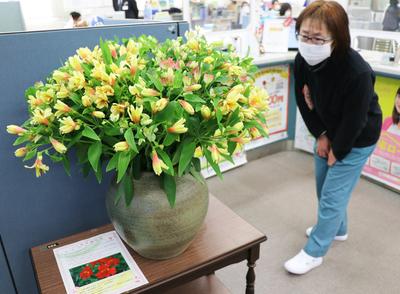 花を飾ろう.JPG