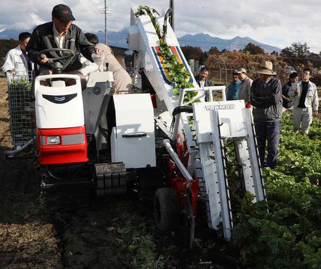 ダイコン収穫機.JPG
