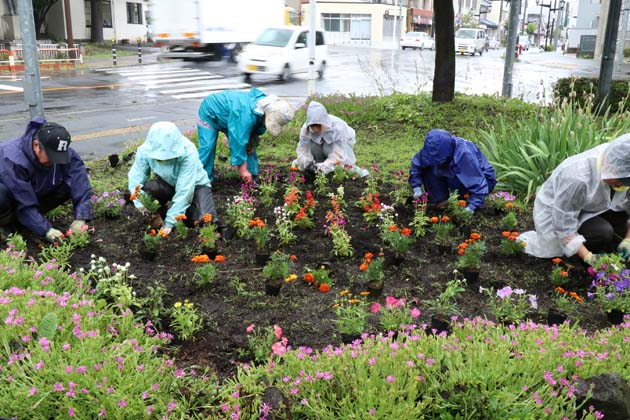 蚕糸公園花植え2018.jpg